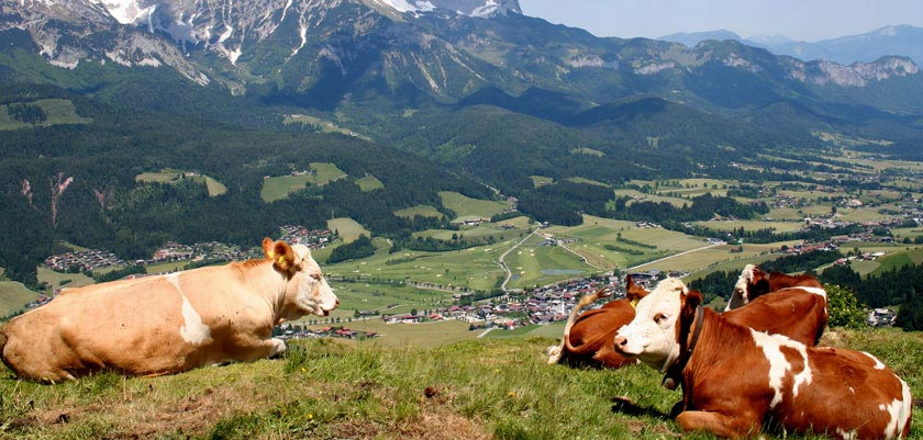 Ellmau, Austria - Mountain & valley view.jpg